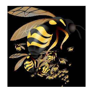 logo_0021_22
